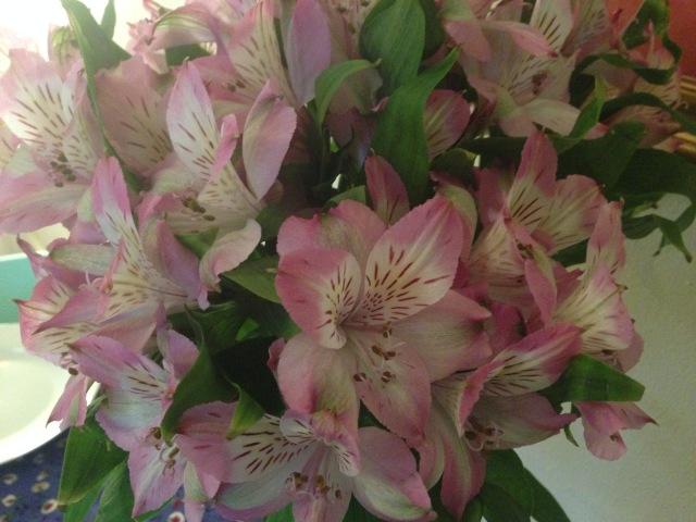 06 Flowering IMG_6302