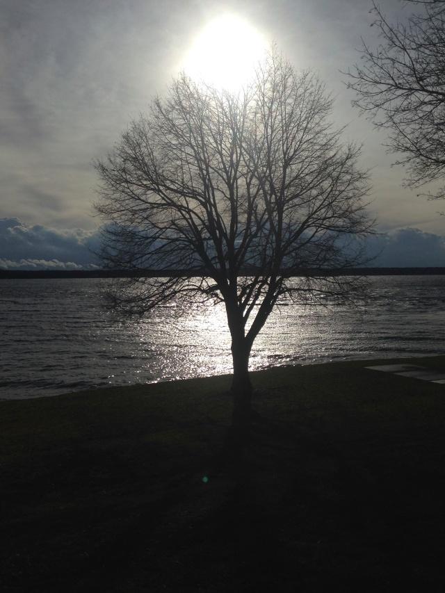 05 Sun on water 2IMG_7138