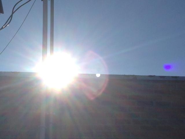 01 Sun IMG_7613