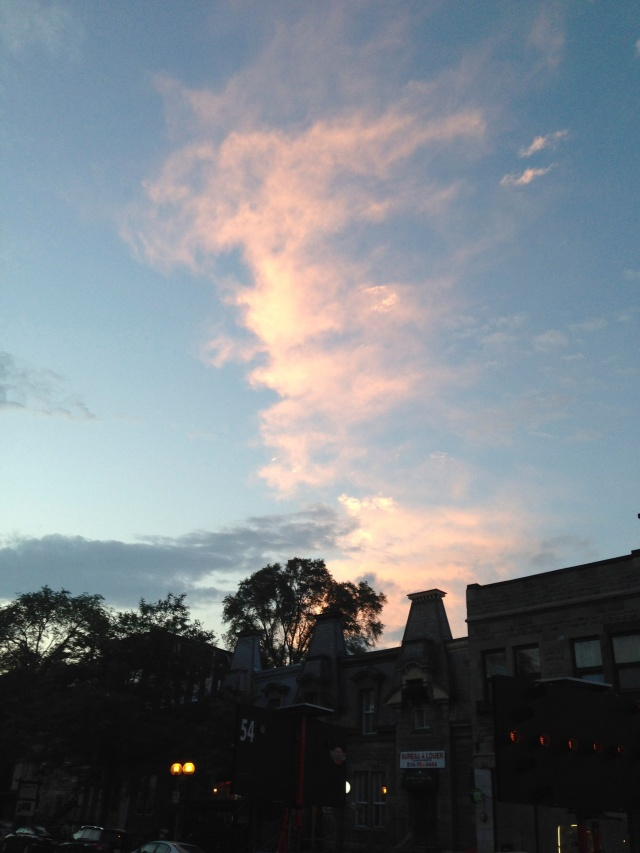 04 bright sky IMG_8298