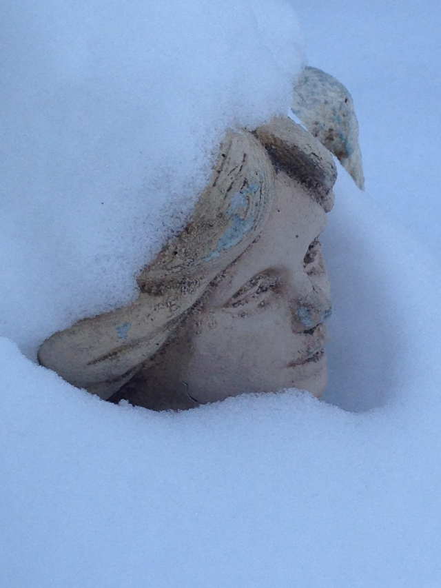 01-face-in-the-snow-img_9156