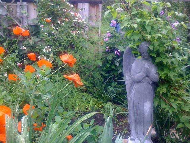 04 angel in garden IMG_0464