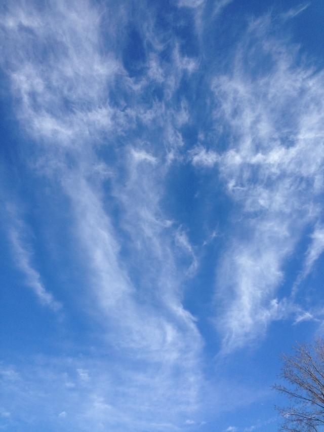 03 sky 2 IMG_3598